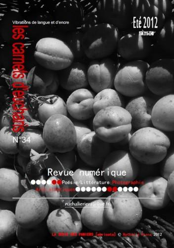 COUV n° 34.jpg