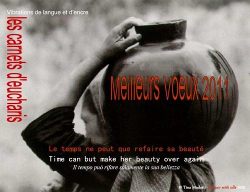 MEILLEURS VOEUX 2011_les carnets d'eucharis.jpg
