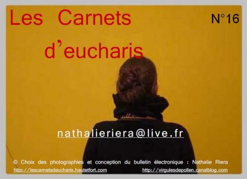 Carnets d'eucharis N°16.jpg