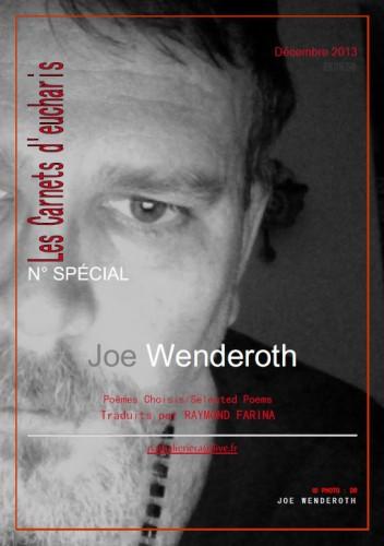 Joe Wenderoth_traduit par Raymond Farina_LCE_Décembre 2013.jpg