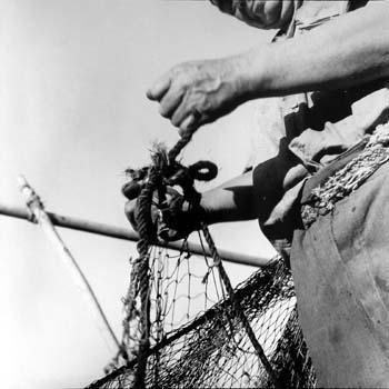 pescadores 1 antonio quintana.jpg